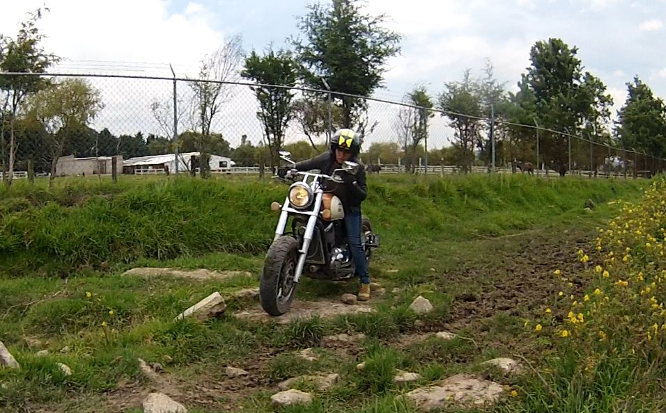 Panthera Off Road en Vulcan 800cc Bobber